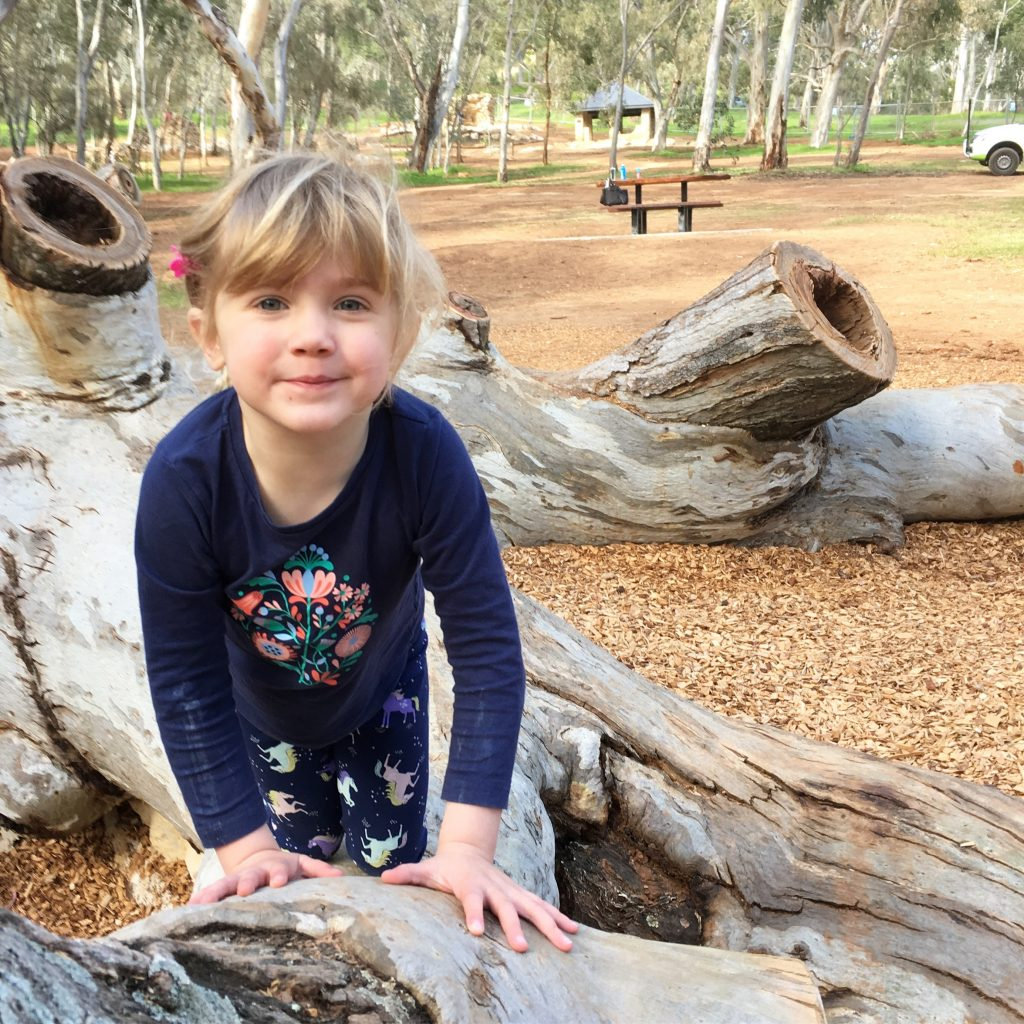Here is a guide to adelaide's top 5 playgrounds!