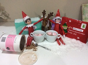 hot chocolate feast with the elves and pet reindeer - Huge List Of The BEST EOTS Ideas
