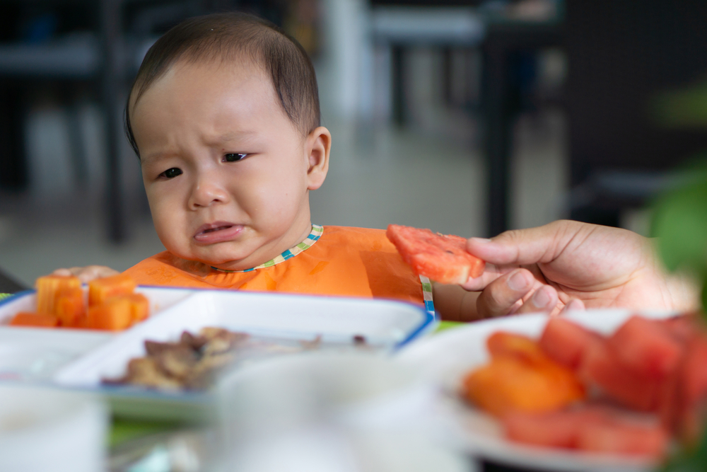 Meal ideas for fussy toddlers