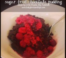 Sugar-Free-Chocolate-Pudding-225x225
