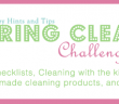 Spring-clean-challenge-featured
