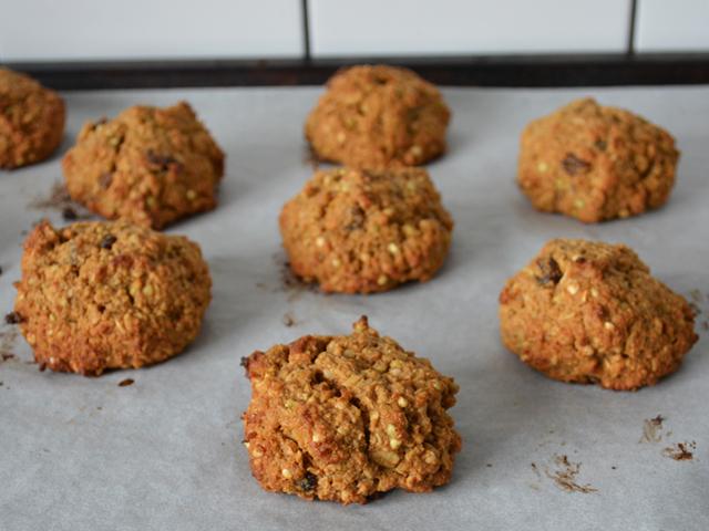 ladyhomemade_lacatationcookies03