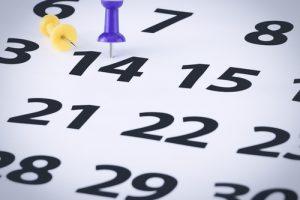 Two week wait - surviving IVF