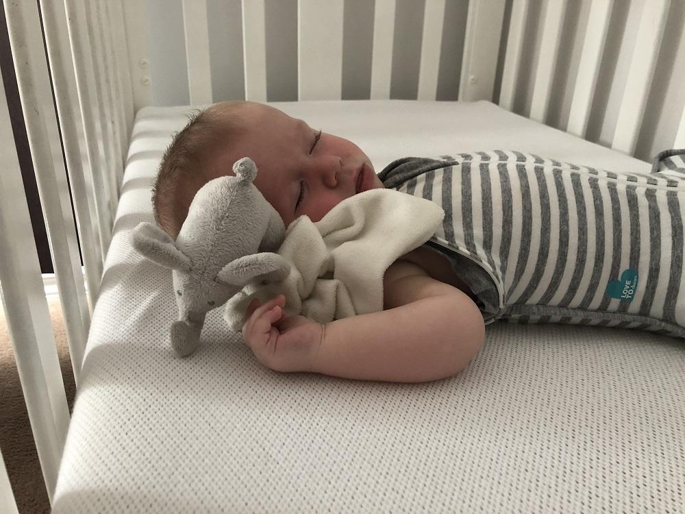 Numu roo baby sleeping