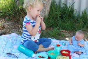 healthy picnic