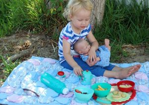 picnic snacks