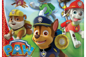 paw patrol party theme