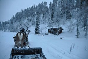 Lapland Christmas - Reindeer Ride To Santa's Shack