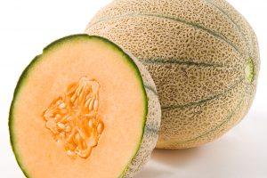 rockmelon recall