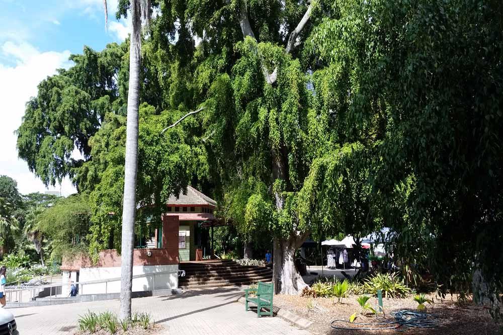 Baby Change Station and Pram Friendly Toilets Brisbane Botanical Gardens