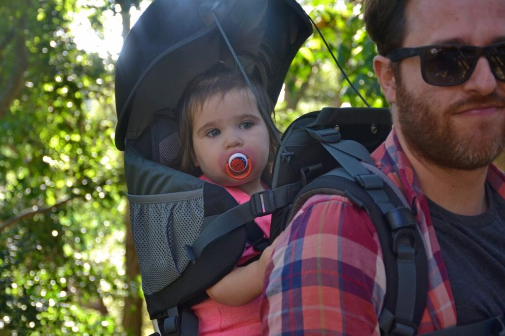 panda child carrier review