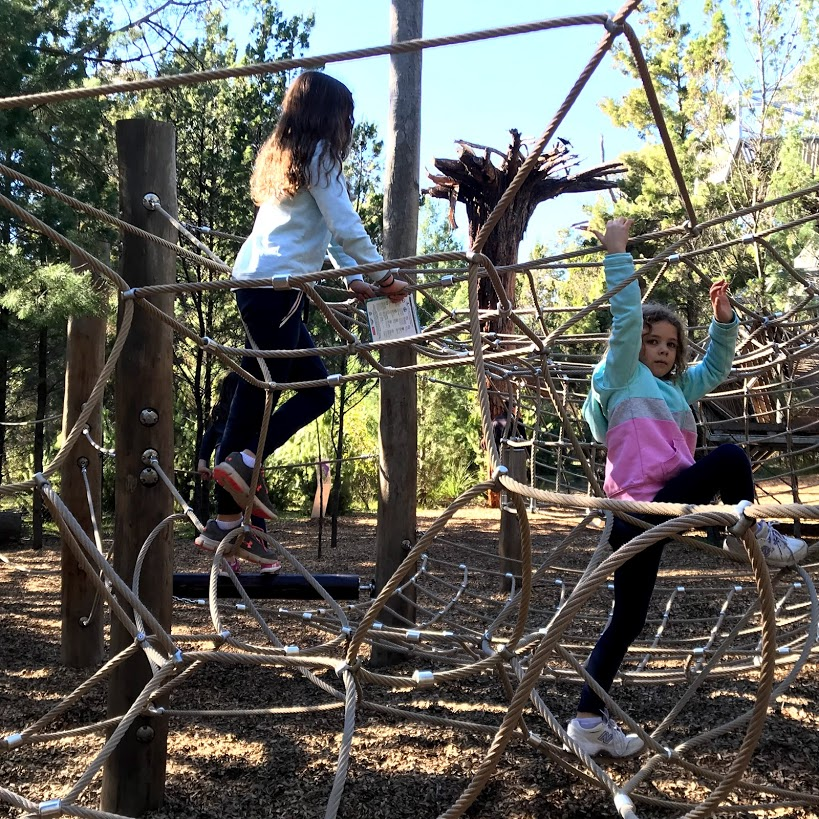 Naturescape Kings Park Perth with kids