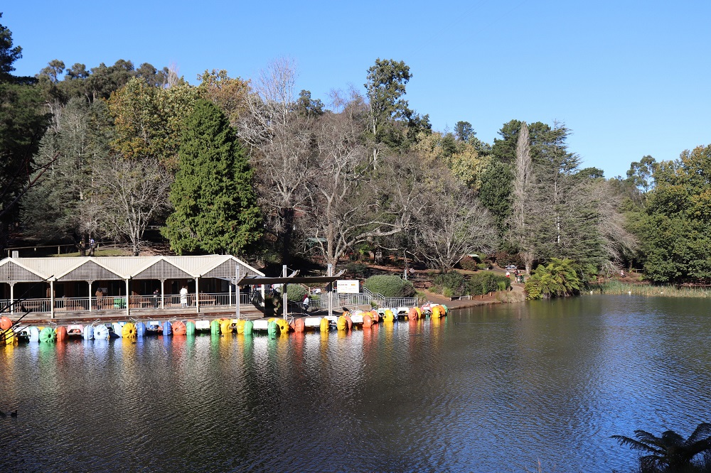 Paddle boats at Emerald Lake Park