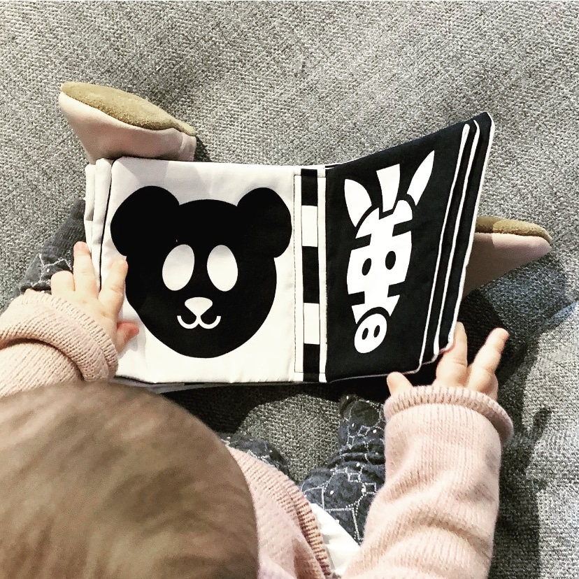 Monochrome baby book