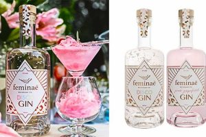fairy floss flavoured disco gin
